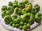 Grren tomatoes