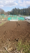 Freshly rotivated plot