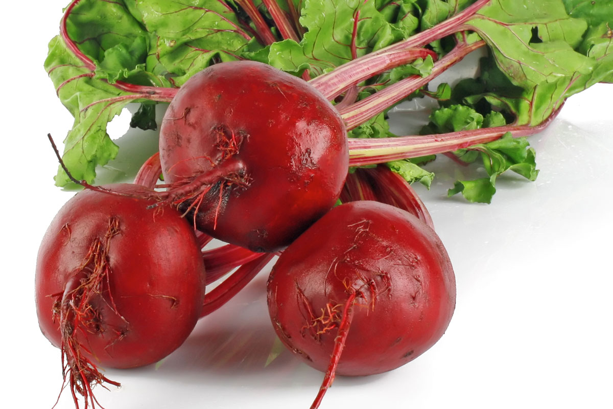How to prevent Beetroot from going to Seed – Powerstown ...